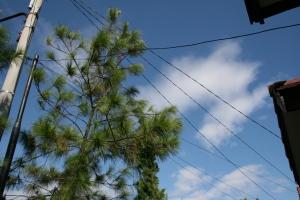 Dan langit pun sangat bersahabat